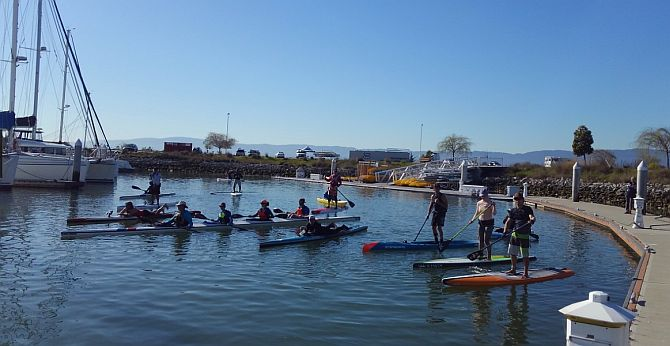Paddle Racing in Redwood City